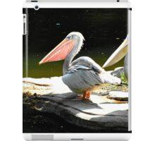 Pelican Party iPad Case/Skin