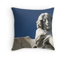 Broken Wing Throw Pillow