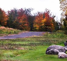 Leaving Lac Brome, Québec, Canada by heatherfriedman