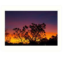 Tanami Sunset Art Print