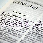 Genesis by Stephen Forbes
