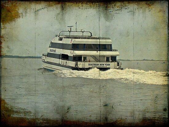 Seastreak Catamaran - Ferry From Atlantic Highlands to NYC by MotherNature