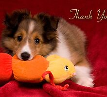 Baby Puppy Thank You by jkartlife
