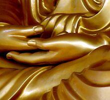 Buddha Hand 1 by Dave Lloyd