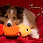 Baby Puppy Thinking Of You by jkartlife