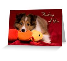 Baby Puppy Thinking Of You Greeting Card