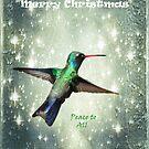 Christmas Hummingbird by Barbara Manis