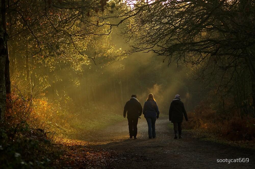 Winter Walk by sootycat669