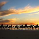 Cable Beach Camels by wpmorro