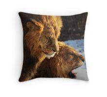 Grumpy Brothers Throw Pillow