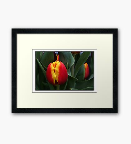 A Separate Duo Framed Print