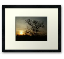 Amber Light Framed Print