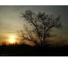 Amber Light Photographic Print
