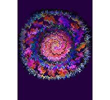Spiral Boogie * Photographic Print