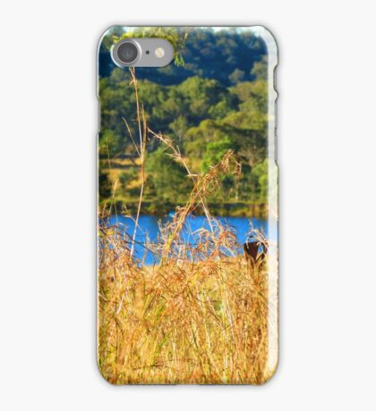 Liquid Gold iPhone Case/Skin