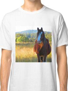 Grand old beauty Classic T-Shirt