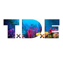 TDE Reef Photographic Print