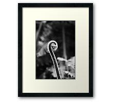 Fern#1 Framed Print