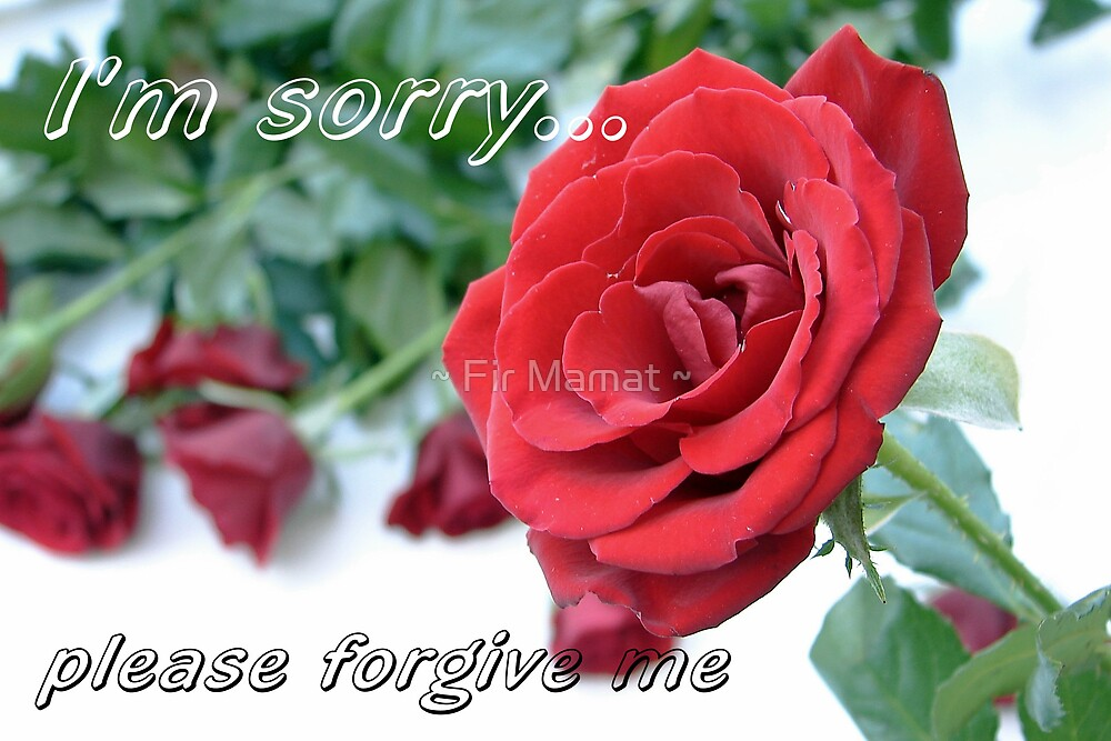 I'm sorry by ~ Fir Mamat ~