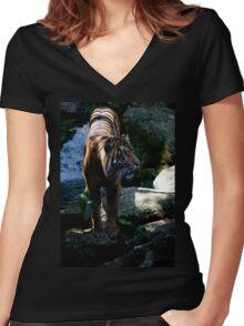 Majestic Tiger from Melbourne Zoo Women's Fitted V-Neck T-Shirt