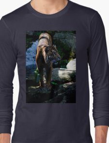 Majestic Tiger from Melbourne Zoo Long Sleeve T-Shirt