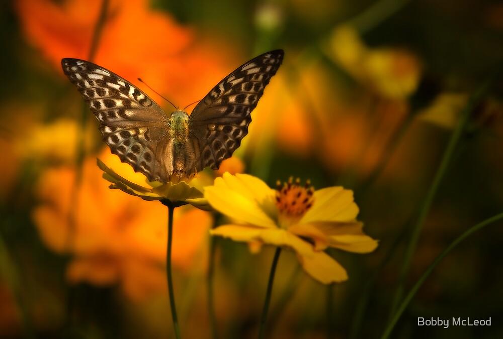 Nectar Flight by Bobby McLeod
