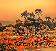 Bay of Fires 6 by wallarooimages