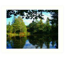 Lawns Woods Lake  Art Print