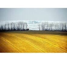 frost on the hills Photographic Print