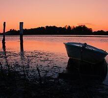 Low Tide Sunset by Joel  Haldane