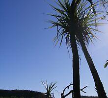 Far North Western Australia by Kim Klau
