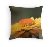 Sunny Side Up II Throw Pillow