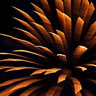 PhotoArt - Fireworks 2 by Georgie Sharp