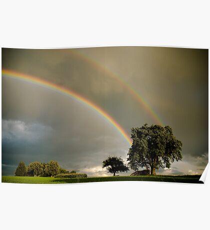 Double Rainbow! Poster