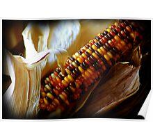 Indian Harvest Poster