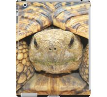 Tortoise Stare - Serious Intimidation of Fun iPad Case/Skin