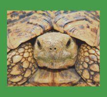 Tortoise Stare - Serious Intimidation of Fun Kids Tee