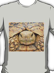 Tortoise Stare - Serious Intimidation of Fun T-Shirt