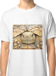 Tortoise Stare - Serious Intimidation of Fun Classic T-Shirt