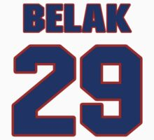 National Hockey player Wade Belak jersey 29 by imsport