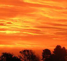 sun rise by sjolin