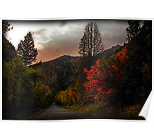 Autumn on the Alpine Loop Poster