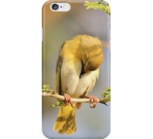 Yellow Masked Weaver - Taking a Rest iPhone Case/Skin