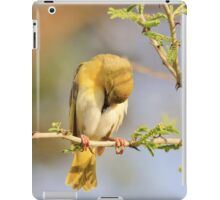 Yellow Masked Weaver - Taking a Rest iPad Case/Skin