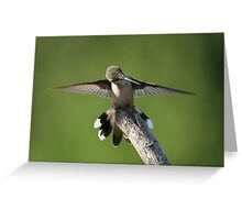 Wing Check Greeting Card
