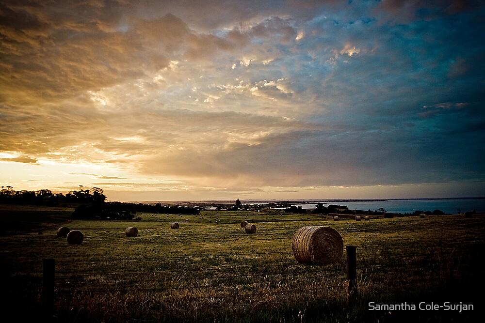 Coastal Views by Samantha Cole-Surjan