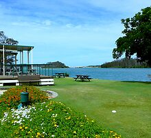 A PARTIAL VIEW OF OUR LOCAL ISLAND GOLF CLUB by Ekascam