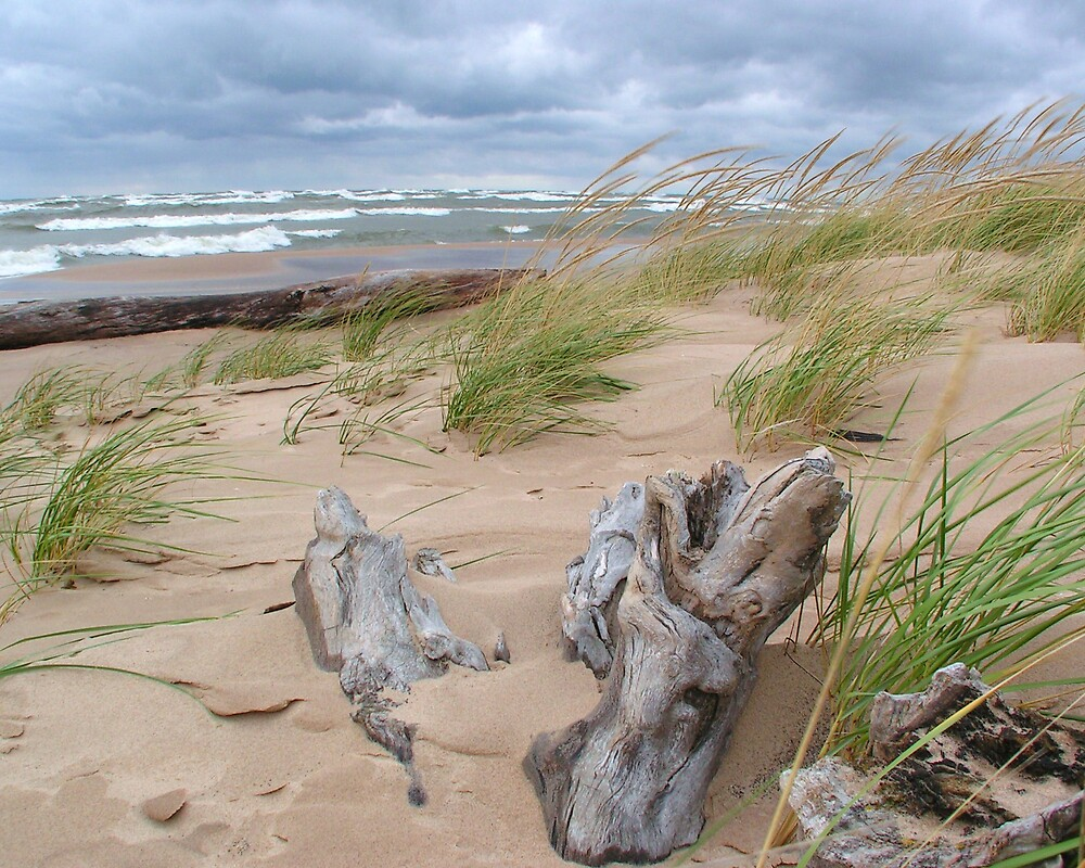 Windy Day On Lake Michigan by Brion Marcum
