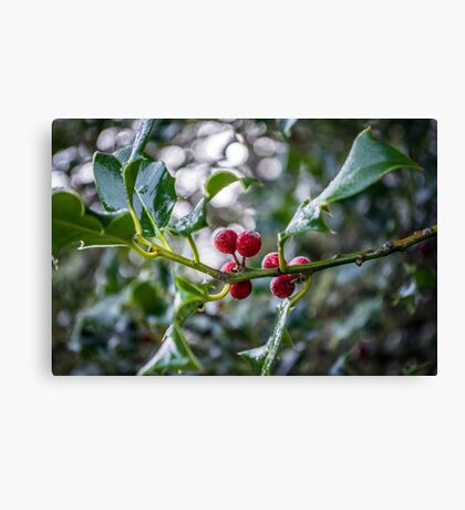 'Tis the Season Canvas Print