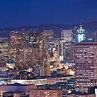 San Francisco skyline at night panorama by Can Balcioglu